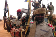 Mali: The Struggle for Central Africa | By Carl O. Schuster | Issue #12