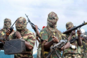 Boko Haram – Nigeria's Jihadist Insurgency | By Carl O. Schuster | Issue #22